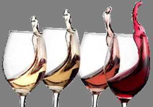 wijnproeverij gouda
